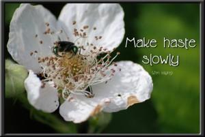 Make Haste...